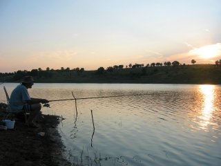 file_166431_0_Lake-Fishing
