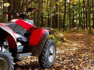 ATV in the Fall