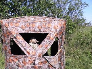 file_167077_0__3groundblind