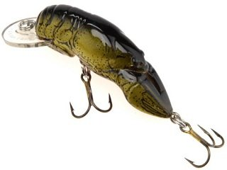 Best Baits for Summer Trout