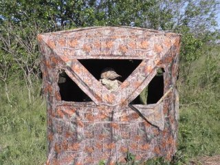 3 Reasons to Use a Ground Blind This Deer Season