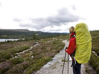 file_168049_0_rainyhike