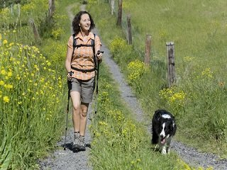 Hiking With Your Dog: Why It's Great for Both of You