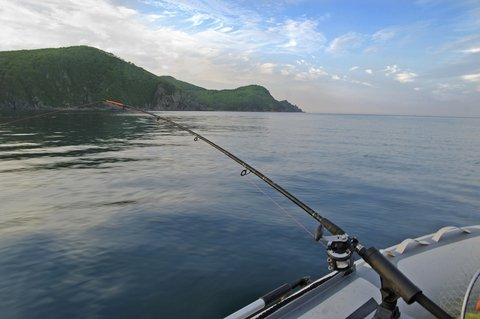 How to Choose the Best Fishing Charter