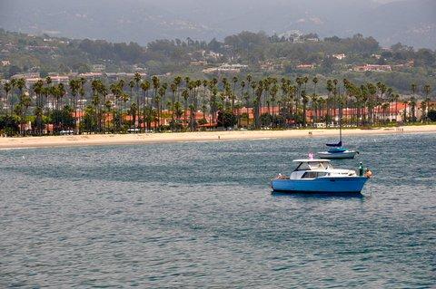 Shark Attacks Santa Barbara Man on Fishing Kayak