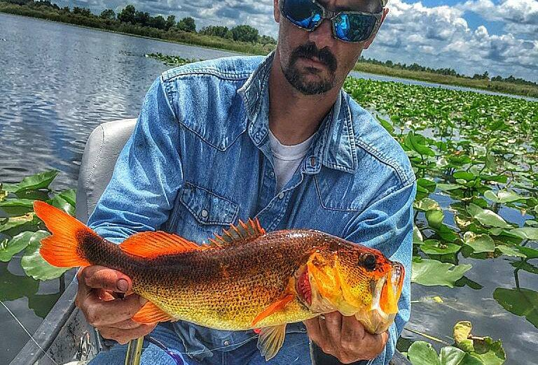 Florida Angler Lands Psychedelic Orange Bass