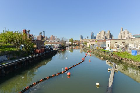 Clean Water Activist Swims Nasty Gowanus Canal