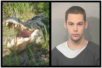Florida Burglar Gets Eaten By An Alligator