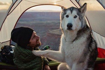 Camping with Dogs Instagram Account Will Have You Gushing