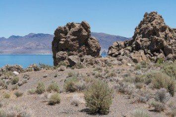 Tips For Fly Fishing Pyramid Lake, Nevada