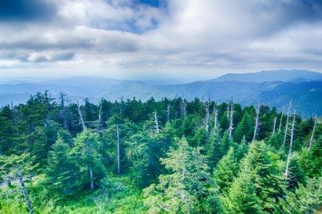 7 Awesome Hiking Trails in the Great Smoky Mountains