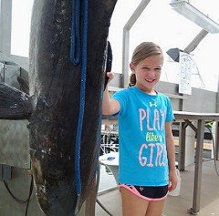 Girl Reels in Record Cobia Bigger Than She Is
