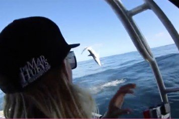 Mako Shark Attacks Fishing Boat Like Wannabe Jaws