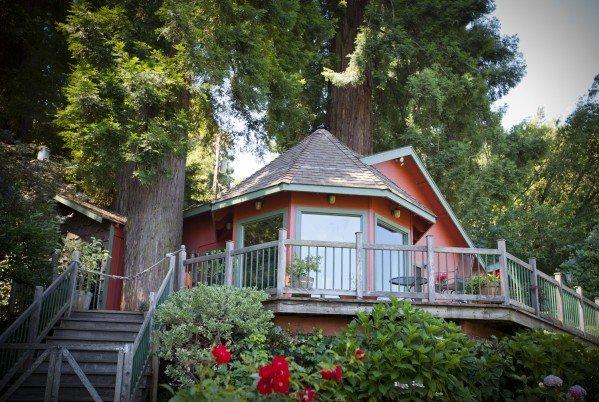 redwood house