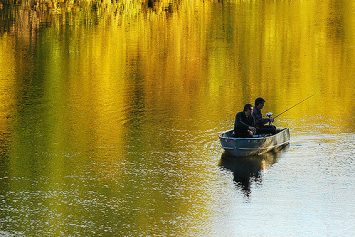 4 Tips for the Fall Topwater Bass Bite