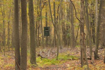9 Ways to Trick Out Your Hunting Treestand