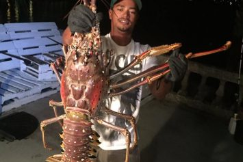Incredible 14-Pound Lobster Caught off Bermuda