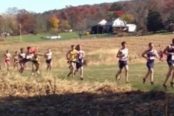 See Moment a Deer Creams This Cross Country Runner