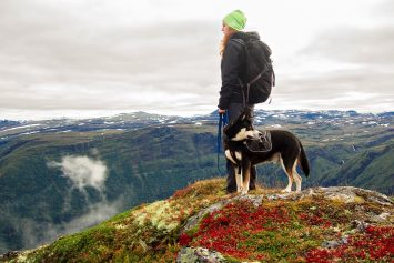 5 Tips for Hiking with Your Dog in Cold Weather
