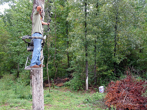 tree stand bowhunter
