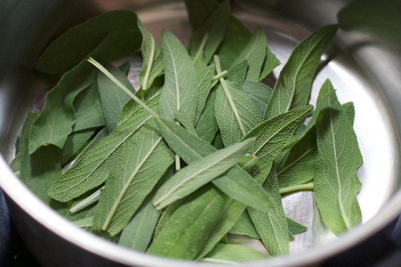 Burn sage to keep mosquitoes away