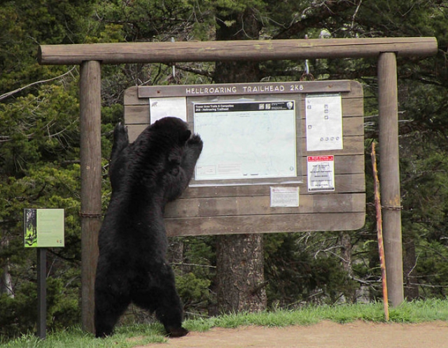 Now, which way to the campground