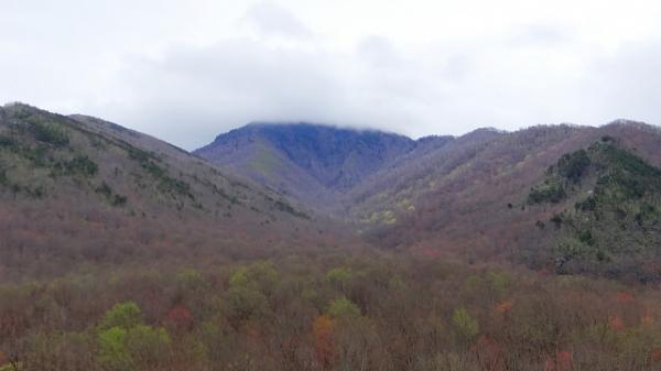 Norton Creek Trail – Great Smoky Mountains